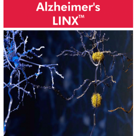 Cyrex Alzheimer's LINX – Alzheimer's-Associated Immune Reactivity