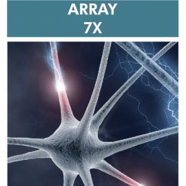 Array 7X Neurological Autoimmune Reactivity Screen – Expanded