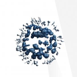 Vibrant Wellness Mycotoxins Test