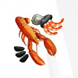 Vibrant Wellness – Seafood Zoomer