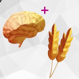 Neural Health Combo (Neural Zoomer Plus + Wheat Zoomer)