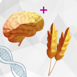 Neural Health Combo w/ APOE4