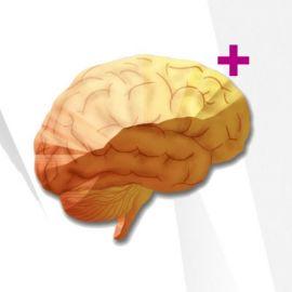 Vibrant Wellness Neural Zoomer Plus